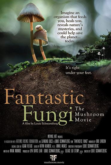 Movie Poster - Fantastic Fungi